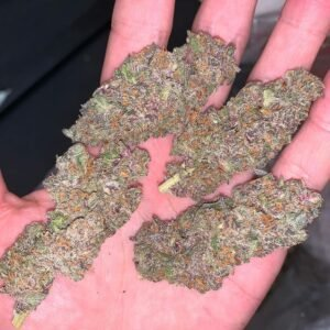 Buy Purple Kush Online Australia Buy Purple Kush Online Sydney Buy Purple Kush Online Melbourne Buy Purple Kush Online Perth